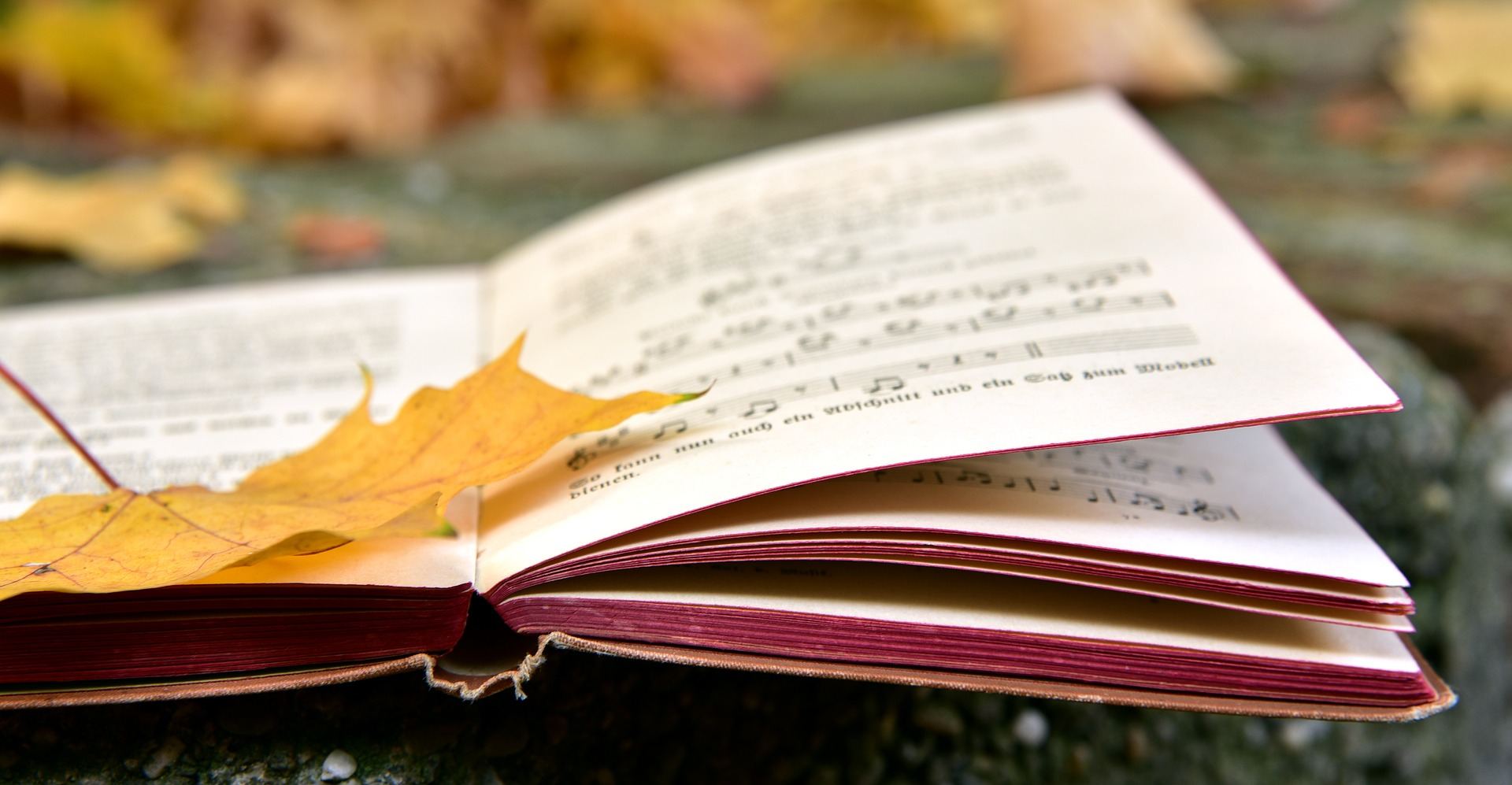 Forord til musikhistorie - for eleven