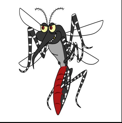 Akustisk sammenspil med kanonsang -  Jeg har fanget mig en myg